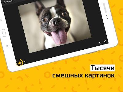 Download АйДаПрикол — смешные фото и гифки каждый день 3.2.4 APK