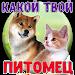 Download Тест: Твой домашний Питомец 2.0 APK