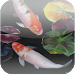 Download 3D Koi Pond Reality Live Wallp 1.2.1 APK