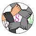 Download Primary Ka Master । Basic Shiksha News । DELED/BED 2.2 APK
