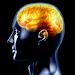Download Best IQ Test 2.2 APK