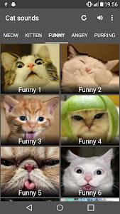 Download Cat Sounds 1.8 APK