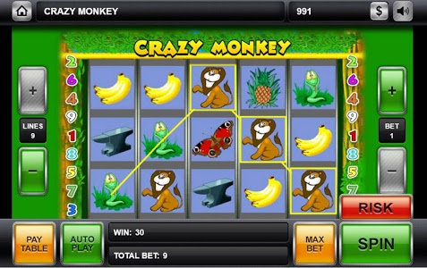 Download Crazy Monkey 1.0 APK