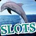 Download Dophin 888 Casino Slots 1.0 APK