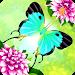 Download Flutter: Butterfly Sanctuary 2.72 APK