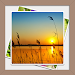 Download Gallery & Image Editor 2.2 APK