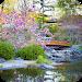 Download Garden Wallpaper 1.0 APK
