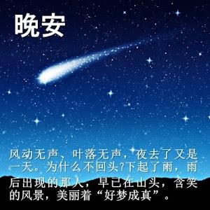 download beautiful good night sayings 560 apk