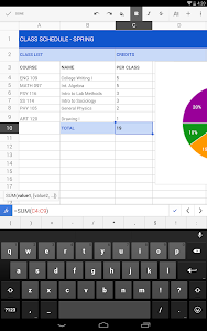 screenshot of Google Sheets version Varies with device