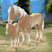 Download Horse Paradise - My Dream Ranch 2.00 APK