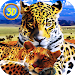 Download Leopard Family Simulator 1.0 APK