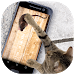 Download Mouse for Cats Simulator 1.0 APK