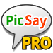 Download PicSay Pro - Photo Editor  APK