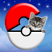 Download Pocket Cats GO 2.1 APK