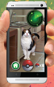 Download Pocket Kitten Cats GO 3 APK
