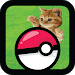 Pocket Kitten Cats GO