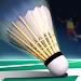 Download Real Badminton World Champion 2018 1.07 APK