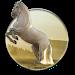 Download Running Horse HD Wallpaper 1.1.4 APK