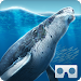 Download Sea World VR2 3.0.3 APK