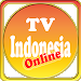 Download TV Indonesia Online 2.0 APK