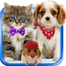 Download Talking cat. Talking puppy. 1.3.0.37 APK