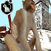 Temple Monkey Run 3D