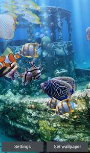 Download The real aquarium - HD  APK