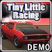 Download Tiny Little Racing Demo 1.32 APK