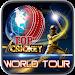 Download Top Cricket World Tour 1.1 APK