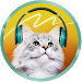 Download Translator for the cat. Simulator 1.0 APK