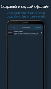 screenshot of VMP - Музыкальный плеер version 1.1.0