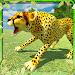 Download Angry Wild Cheetah Simulator 1.4 APK