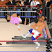 Download Wrestling Revolution 1.932 APK